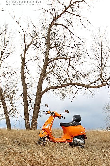 alberta photographer vespa photo