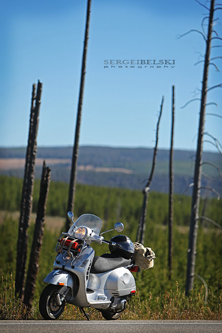 calgary wedding photographer vespa photo