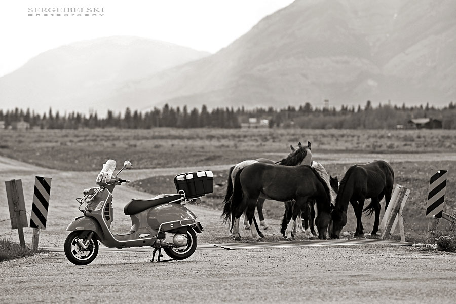 sergei belski photographer vespa adventures photo