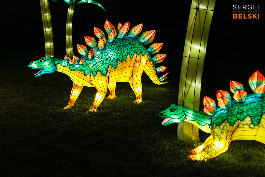 calgary zoo illuminasia event photographer sergei belski photo