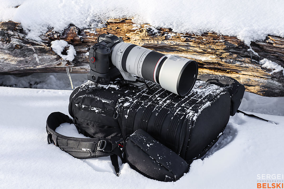 waterton wildlife photographer sergei belski photo